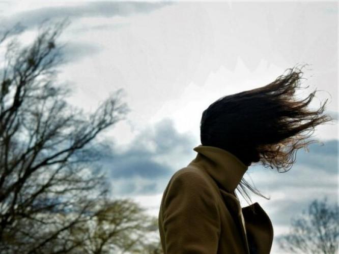 Рятувальники попереджають про сильний вітер на Дубенщині